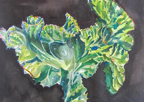 Succulent, 2018, Watercolor, 10x14
