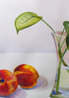 Still Life of Peaches, 2016,  Watercolor, 14x17, (SOLD). Prints available.