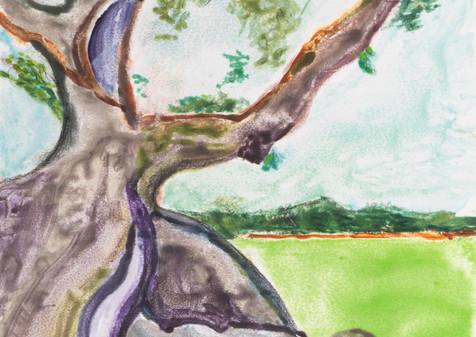 Ceiba I, 2019, Watercolor Monoprint, 21x28
