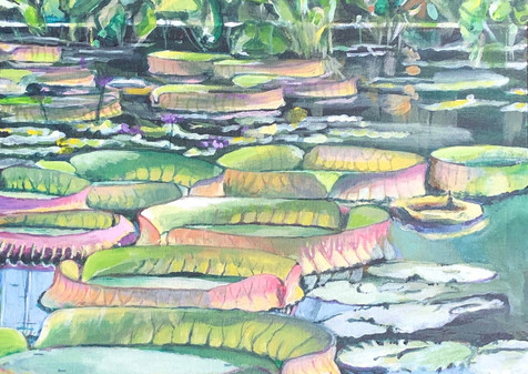 Victoria Water Lily Pad, 2019, Oil, 16x16