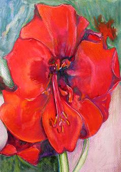Amarilis I, 2017, Watercolor, 17x14