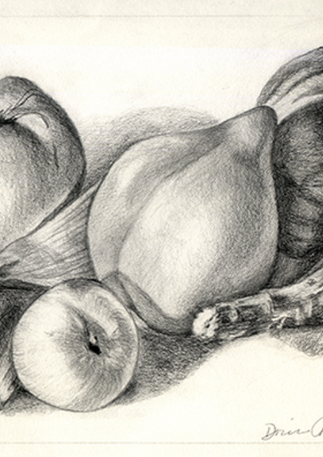 Still Life of Fruit, 2012, Graphite Pencil,15x16,  (SOLD). Prints available.