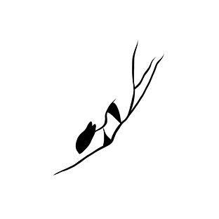 로고정방형.jpg