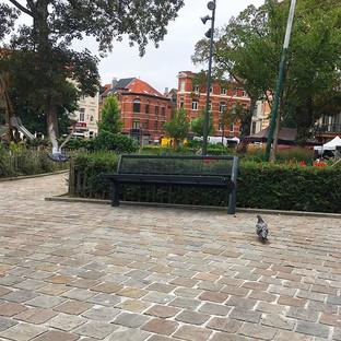 Il fait gris pigeon aujourd'hui 🐦☁️ #br