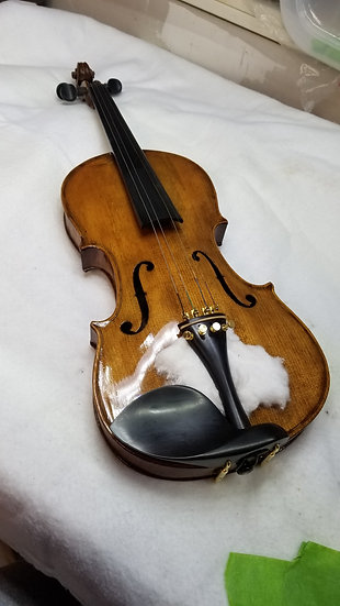 Amber honey violin