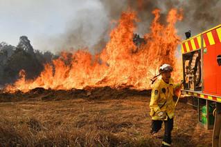 Bushfires Devastate Australia
