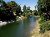 Sydenham River