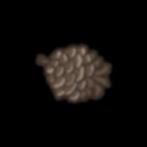 Pine%252520Cone%2525204_edited_edited_ed
