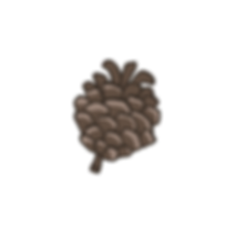 Pine%2520Cone%25204_edited_edited.png