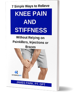 Knee Pain Cover 3D.png