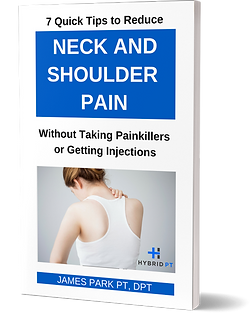 Neck & Shoulder Pain E-Book Cover 3D.png