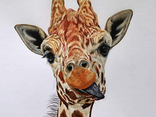 'Cheeky Giraffe' print