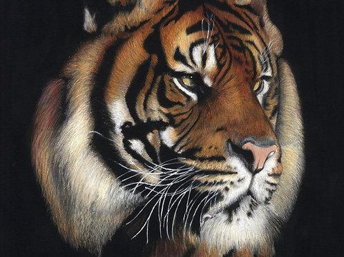 'Rajah' Tiger Print