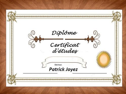 Livre Animation + Clé USB ou DVD - Certificat d'études