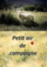 AFFICHE PETIT AIR DE CAMPAGNE.png
