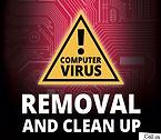 virus-1.jpg