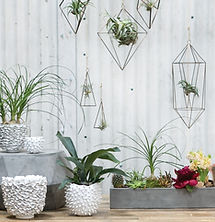 modern-wholesale-home-decor.jpg