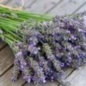 Lavender 13 Oz