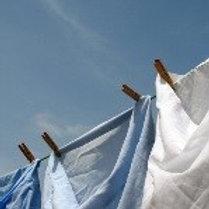 Clean Cotton 13 Oz