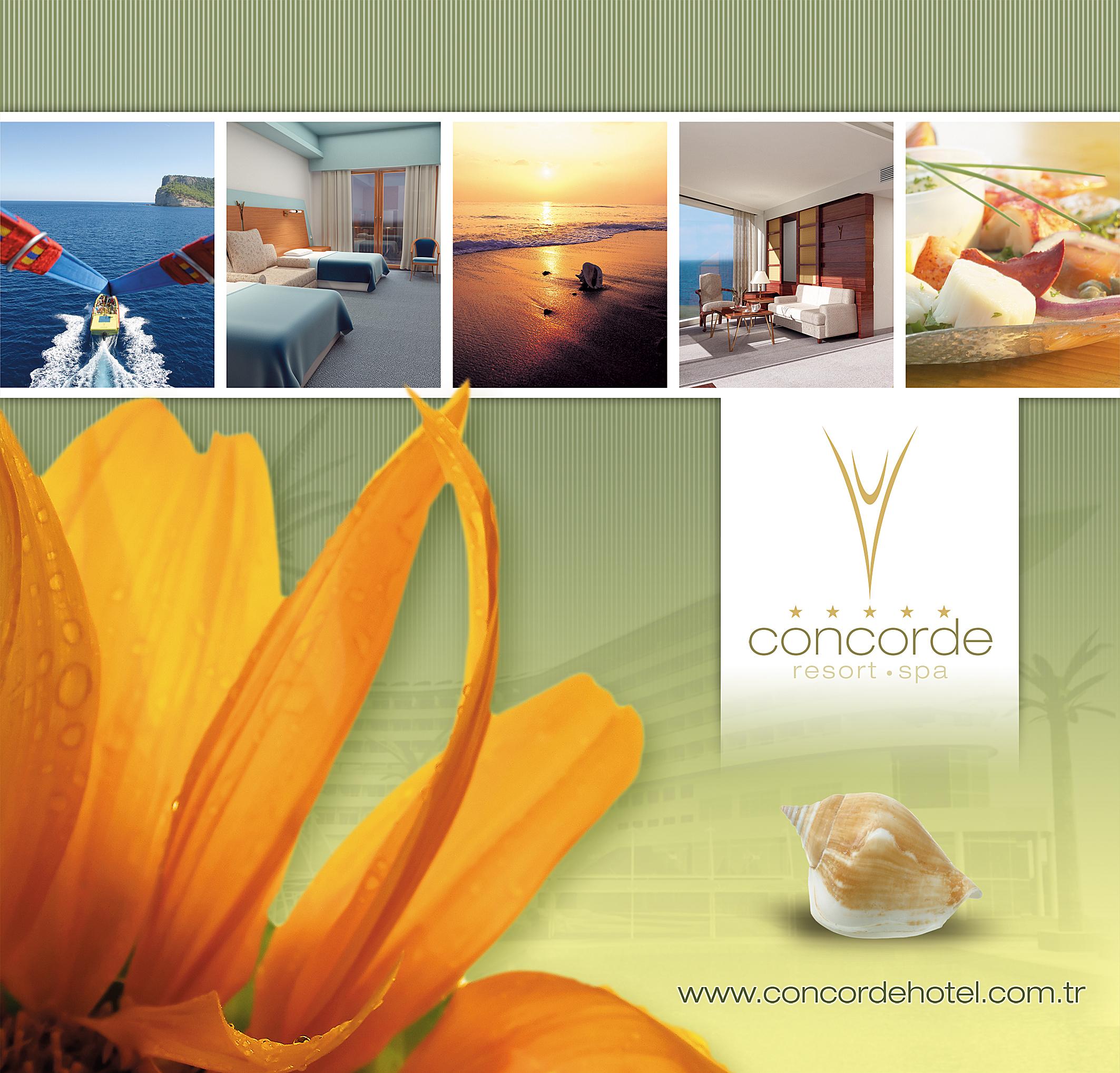Concorde Catalogue Design