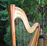 Asheville Harp in front of trees