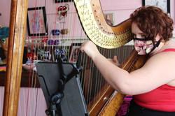 Your Asheville Harpist