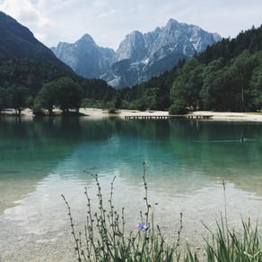Géobiologie Cote d'Azur (Alpes Maritimes, région PACA)