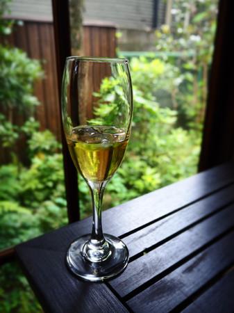 ムーレックのちっこいほう わりと雅な都のほう 梅酒…に見える、若狭の梅で作った梅ジュース