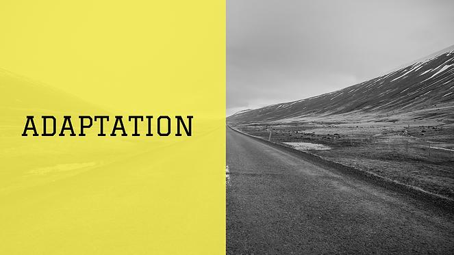 Adaptation.png