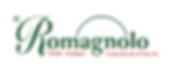 top_logo_Romagnolo_in_trasparenza.png