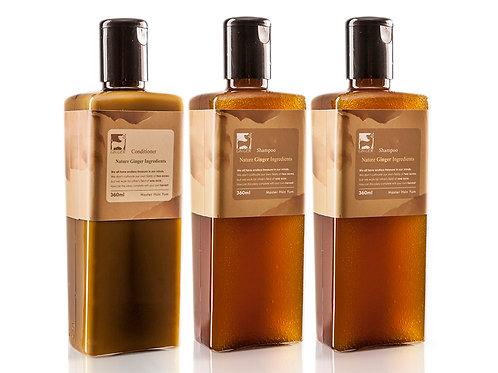 GR9004純薑洗護髮金磚禮盒套裝