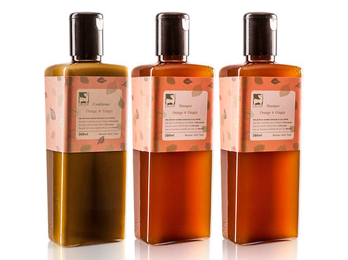 GR9006甜薑丹橘洗護髮金磚禮盒套裝