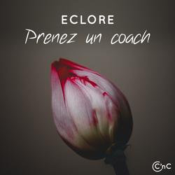 Coaching de Talent
