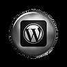 silver-button-social-media-wordpress-log