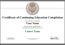Certified Forensic Computer Examiner - F