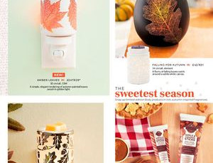 Scentsy Autumn Collection 2018