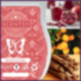 Scentsy UK New Release Spiced Fruit Cider Wax Bar