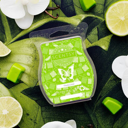 Fiesta Lime Scentsy Bar
