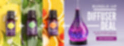 Free Scentsy, Cheap Scentsy Diffuser, Free Scentsy Oils, Scentsy Diffuser Deal