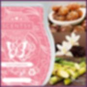 Scentsy UK Love & Happiness Wax Bar