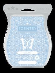 Glacial Ice  ~ Scentsy Bar