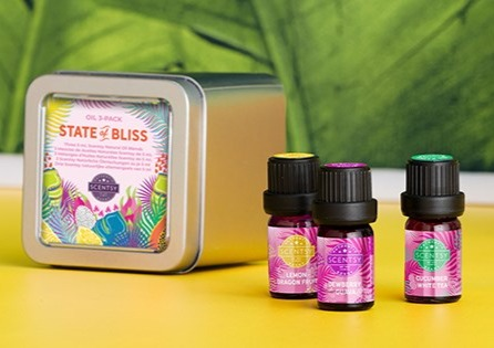 State of Bliss Oil 3-pack