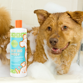 Best Bud Suds Scentsy Pet Products Aroma