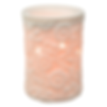 FlowerVineScentsy Warmer.png
