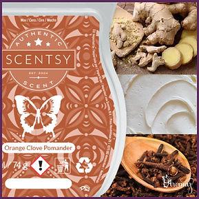 Scentsy UK Orange Clove Pomander Wax Bar