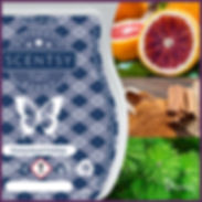 Scentsy UK New Release Homestead Holiday Wax Bar