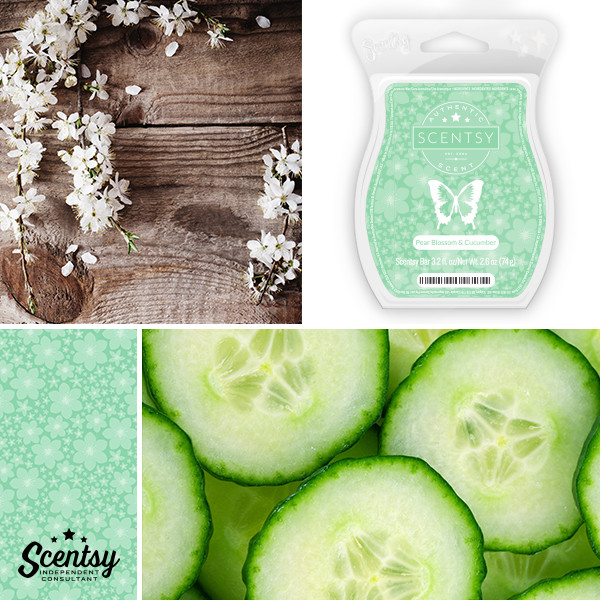 Scentsy Wax, Scentsy Scentsational Scent, New Scent, Scentsy UK, Join Scentsy