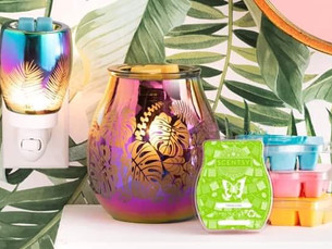 Scentsy UK   Summer Collection 2020  Amazing New Scents and products