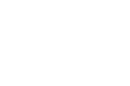 International Film Festival for Peace Inspiration and Equality 2015 International Excellence Award