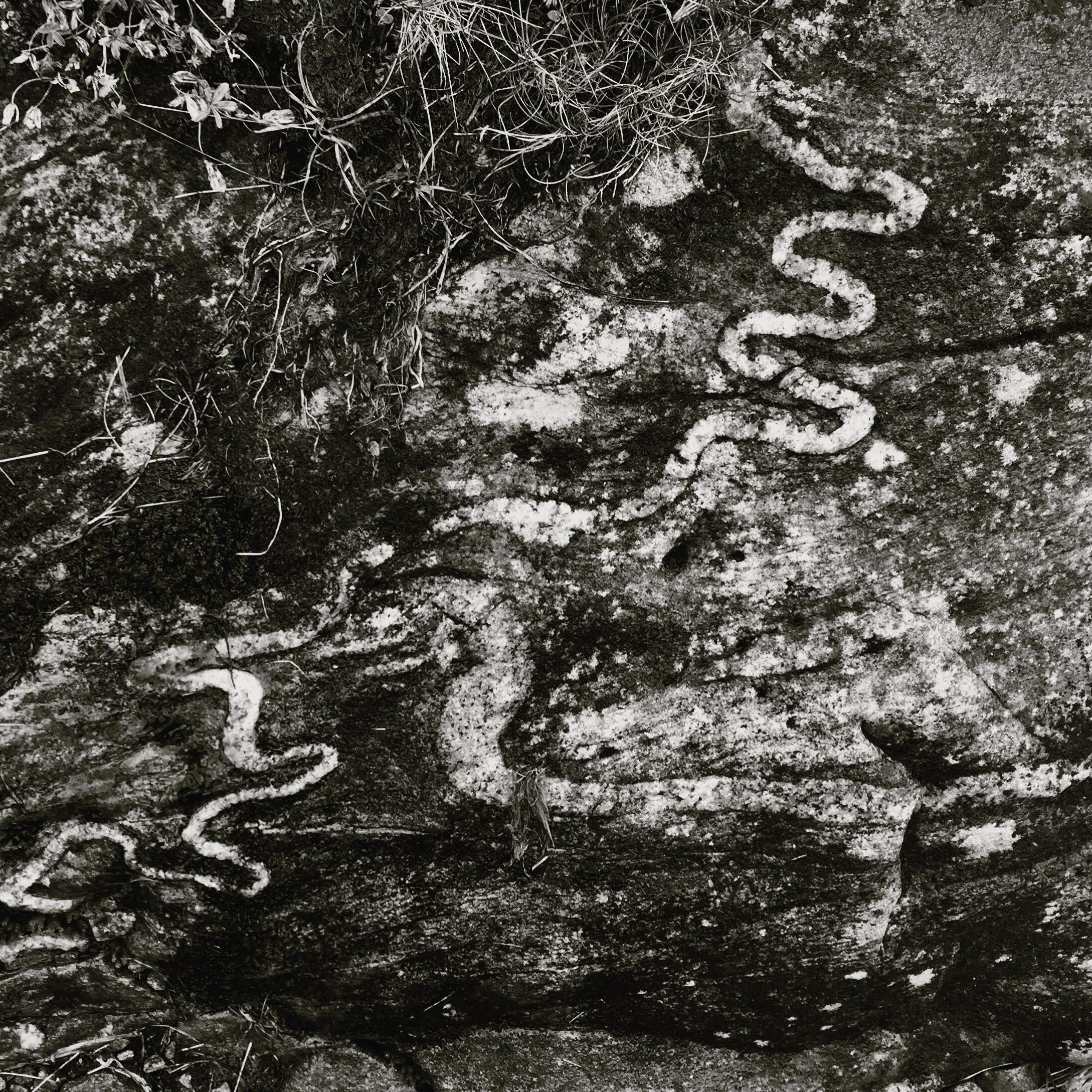 Quartz Snakes
